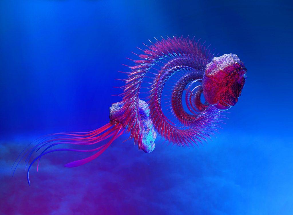 সামুদ্রিক প্রাণী sea creatures